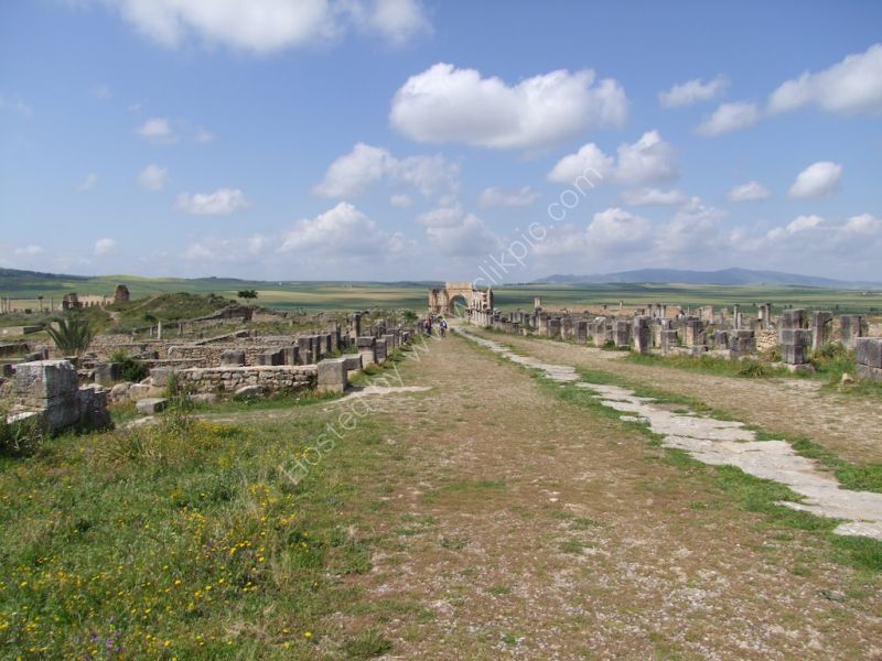 Main Colonnaded Street of Volubilis