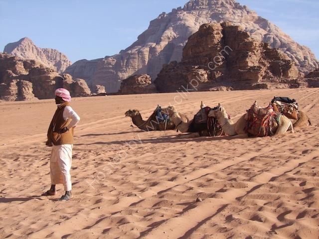Jordanian & Camels, Wadi Rum