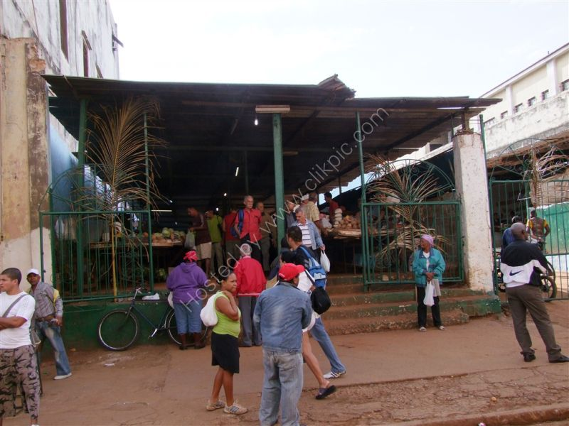 Agricultural Market, Havana