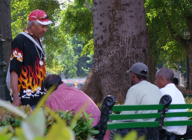 Cubans deep in discussion!, Havana