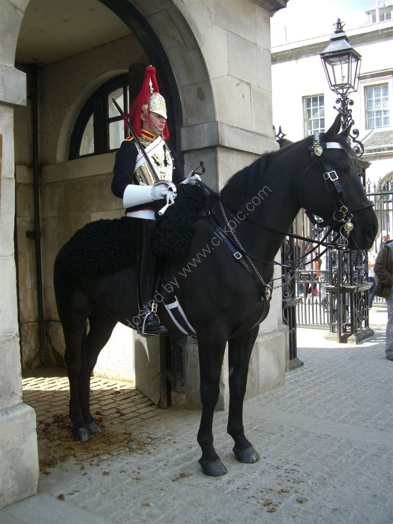 Household Cavalry Guard, Whitehall, London