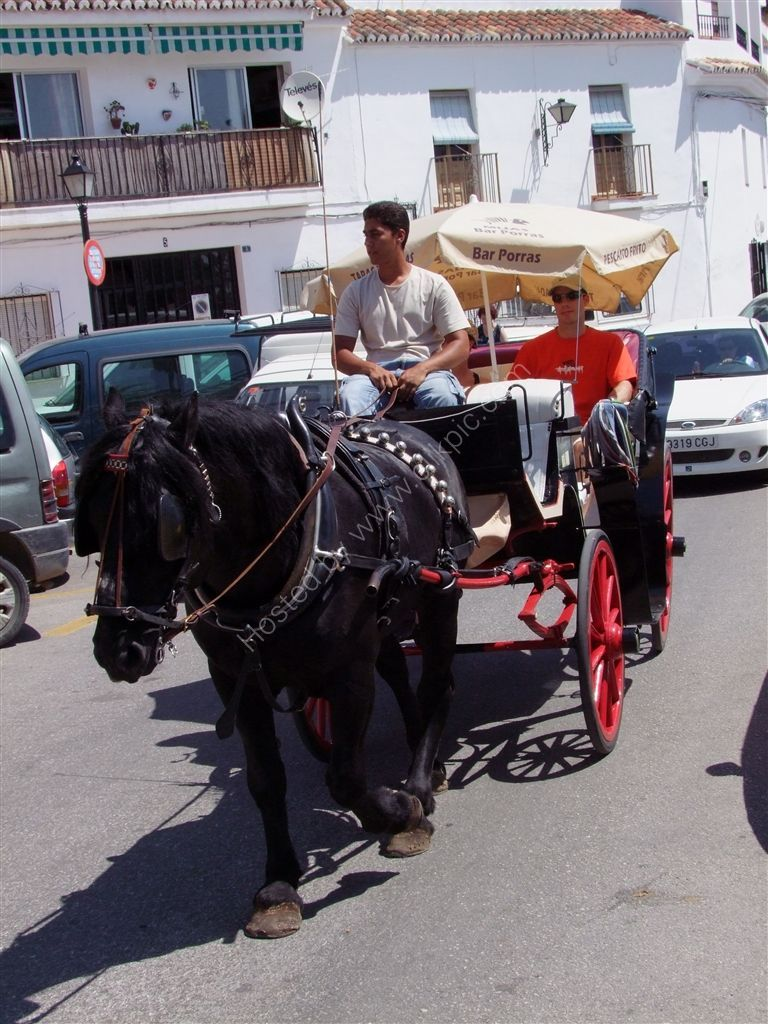 Horse Drawn Carriage, Mijas