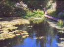 """The Lillie Pond, Inverewe"""