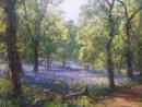 """Early Summer, Kinclaven Wood"". Oil on board. 46x36cm. SOLD"