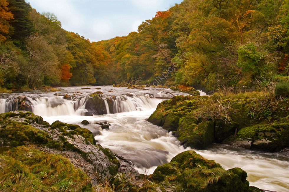 Cenarth Falls - Ceredigion