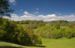 Dinefwr Park