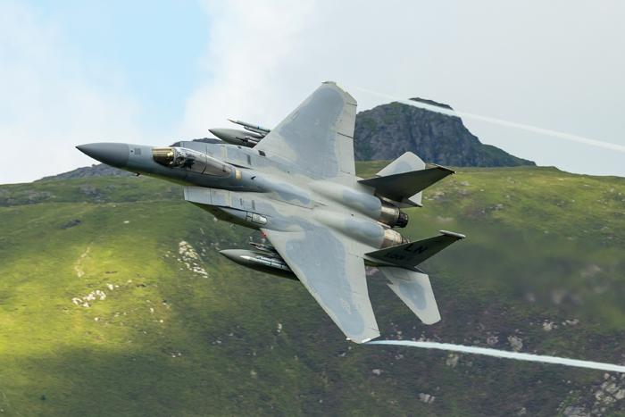 "McDonnell Douglas F-15C Eagle ""Grim Reaper""  008"