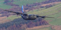 "Lockheed C-130 Hercules "" Special Tail"""