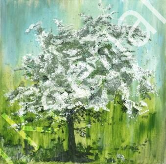 Original on Canvas Hawthorn