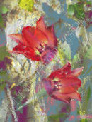 Tulip Impressions