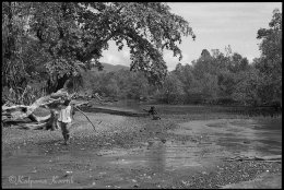 A man carrying wood on the island of Flores Indonesia