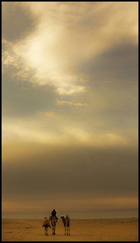 Glyn Davies Landscape