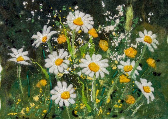 Buttercup & Daisy Field