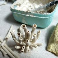 """Constructing porcelain plants for """"Found in the Fields"""" at John Clare Cottage, by Kathryn Parsons"""