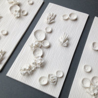 """""""Found in the FIelds Triptych"""" Kathryn Parsons (detail) hand modelled porcelain"""