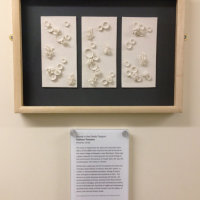 """""""Found in the Fields Triptych"""" at Stamford Hospital, Kathryn Parsons, hand modelled porcelain"""