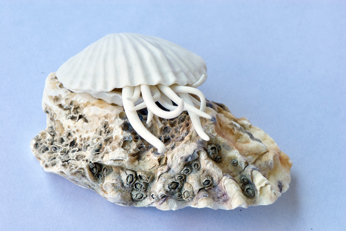 """Rare Swimming Coral"" Kathryn Parsons (2017) hand modelled porcelain and found shell, 5cm tall."