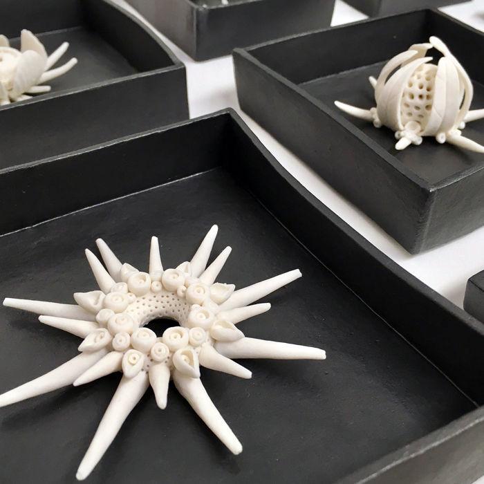 porcelain radiolaria sculptures Kathryn Parsons