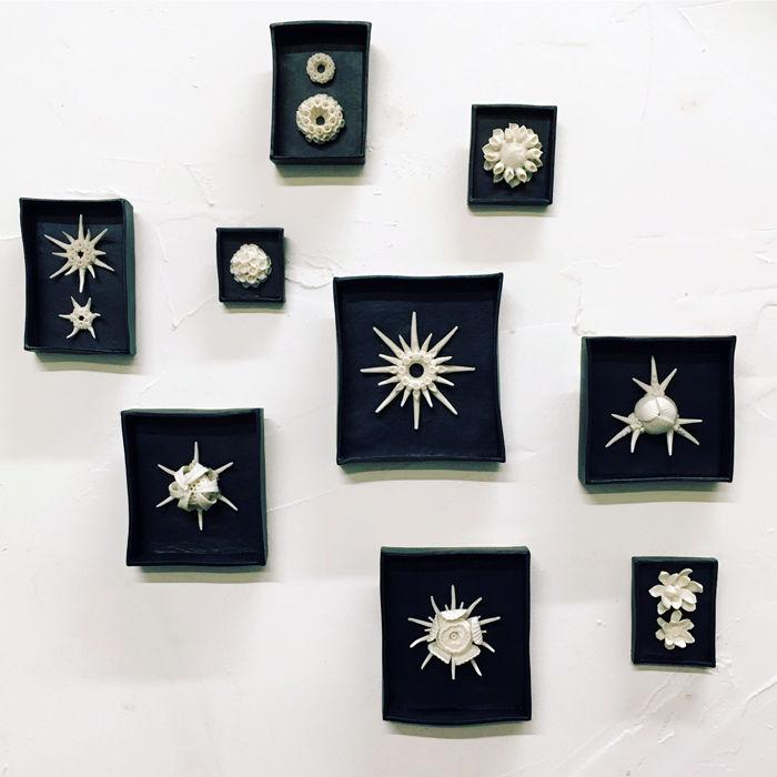 handmade porcelain radiolarian sculptures Kathryn Parsons