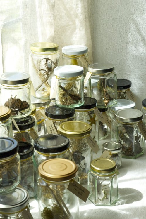 Found in the Fields 1 (detail), Kathryn Parsons, found materials & 42 jam jars