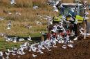 Ploughing near Loch Ken
