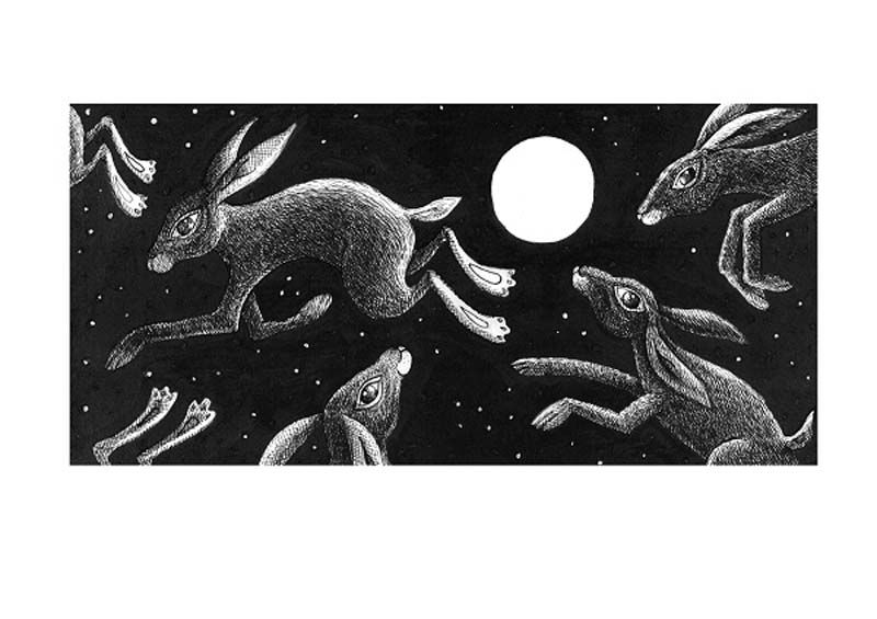 Hares Playing