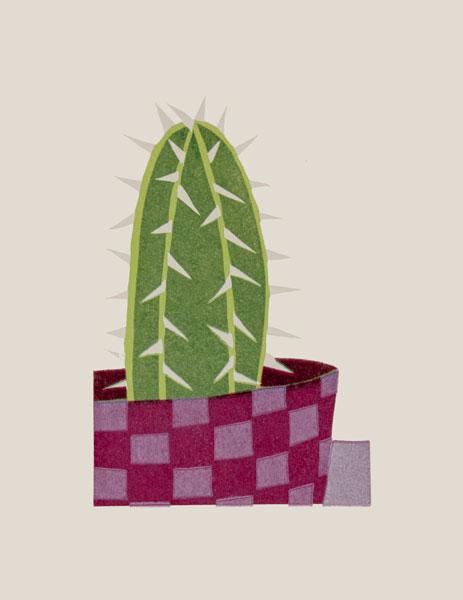 Checks Cactus, 2014