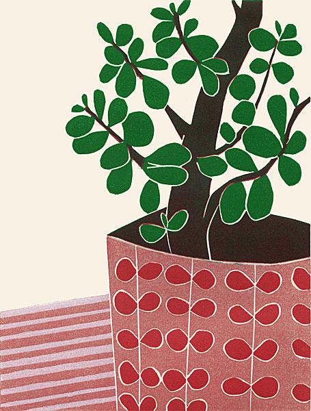 The Money Tree II
