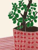 The Money Tree II, 2013