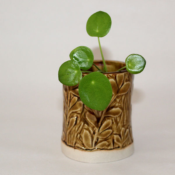 Mustard Mini Ceramic Plant Pot