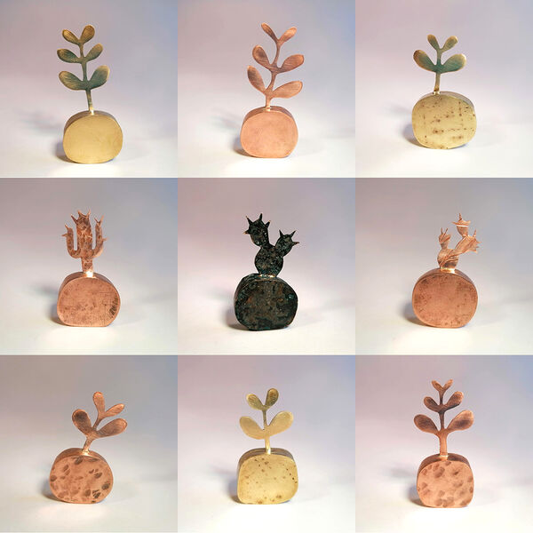 Kerry Day - Mini Money Tree and Cacti - Sculptures