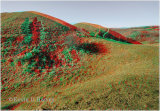 Castle Hill Earthworks 2
