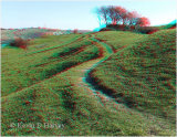 Castle Hill Earthworks 3