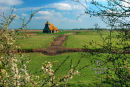 Fairfield Church through the bushes