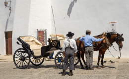 Ronda Carriage Business A