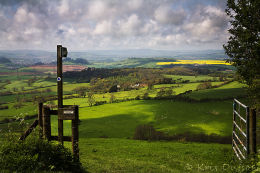 View-From-Eggardon