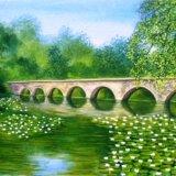 Bosherston Lilly Ponds Old Stone Bridge