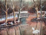 Bridge at Roath Park