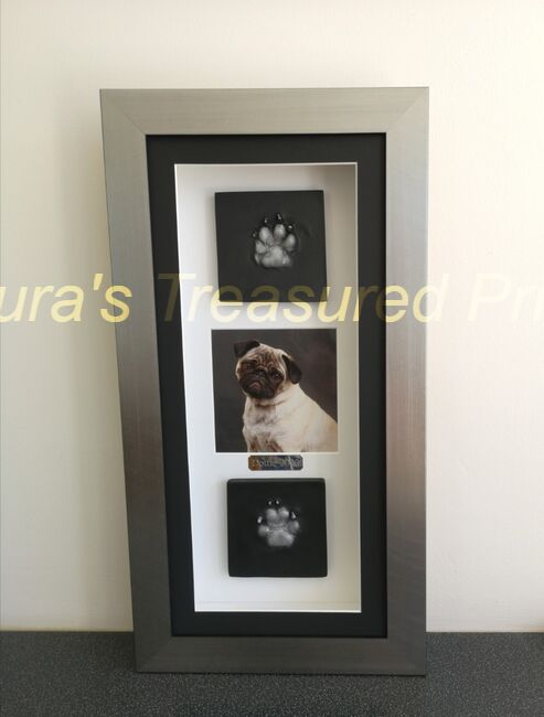 2D Pug paw's Outprint with photo