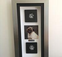 Dottie the Pug- paw prints