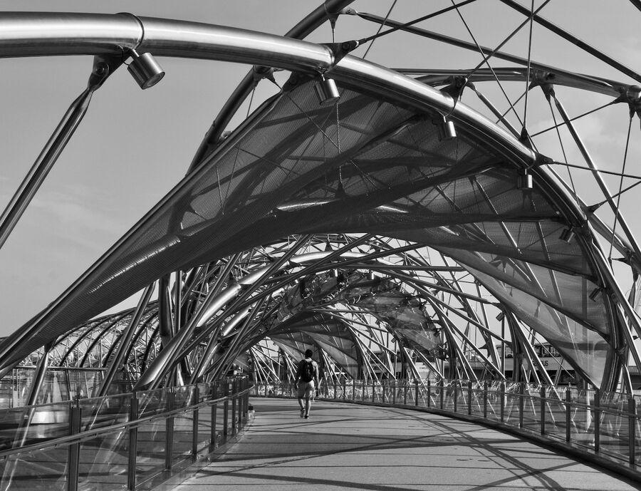 Complexities of a Helix: Bridge Form - Megan Lockington