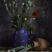 From the garden--Horace Goodenough--1