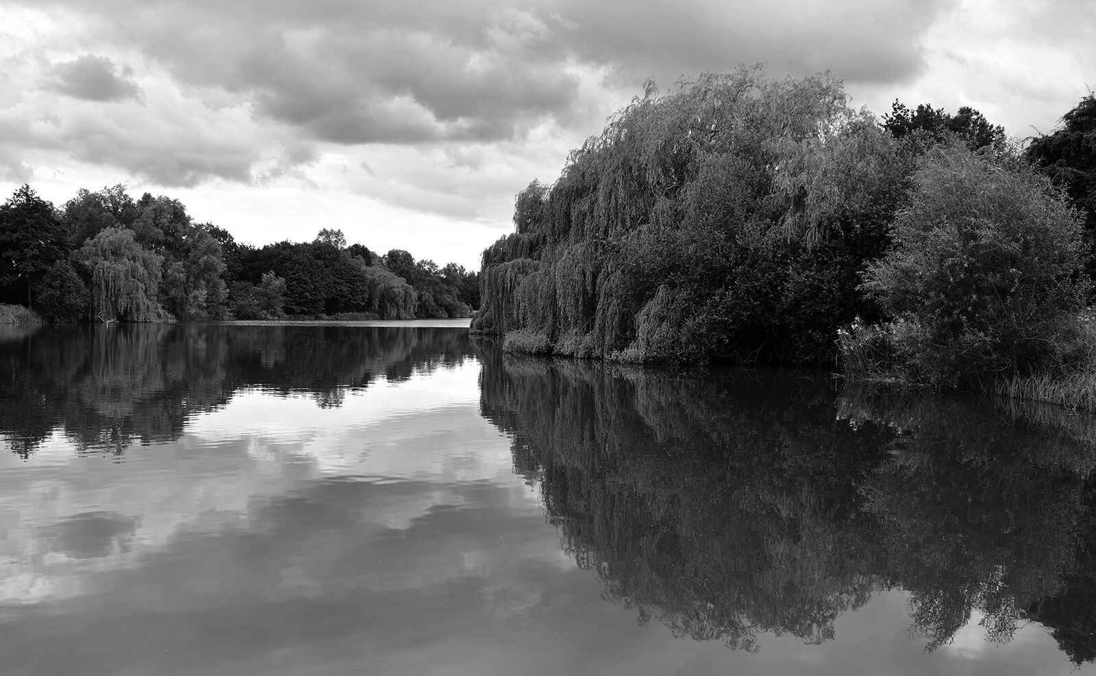 John Merricks  Lake--Anthony Mason--2