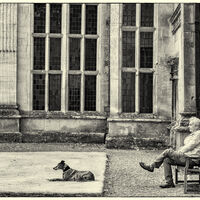 Master of the House - John Whitby (C)