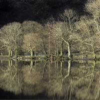 Reflections at Buttermere - Barry Welch