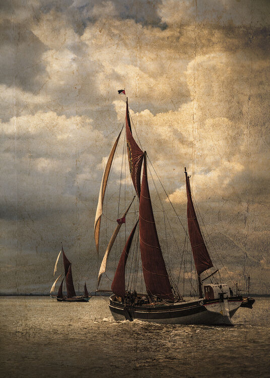 Thames Barge Racers - Martin Janes