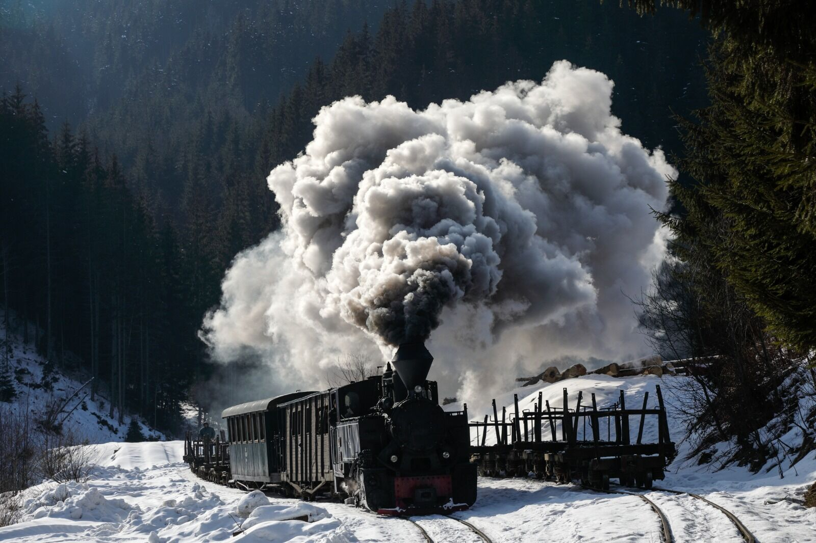Winter Steam Martin Robinson
