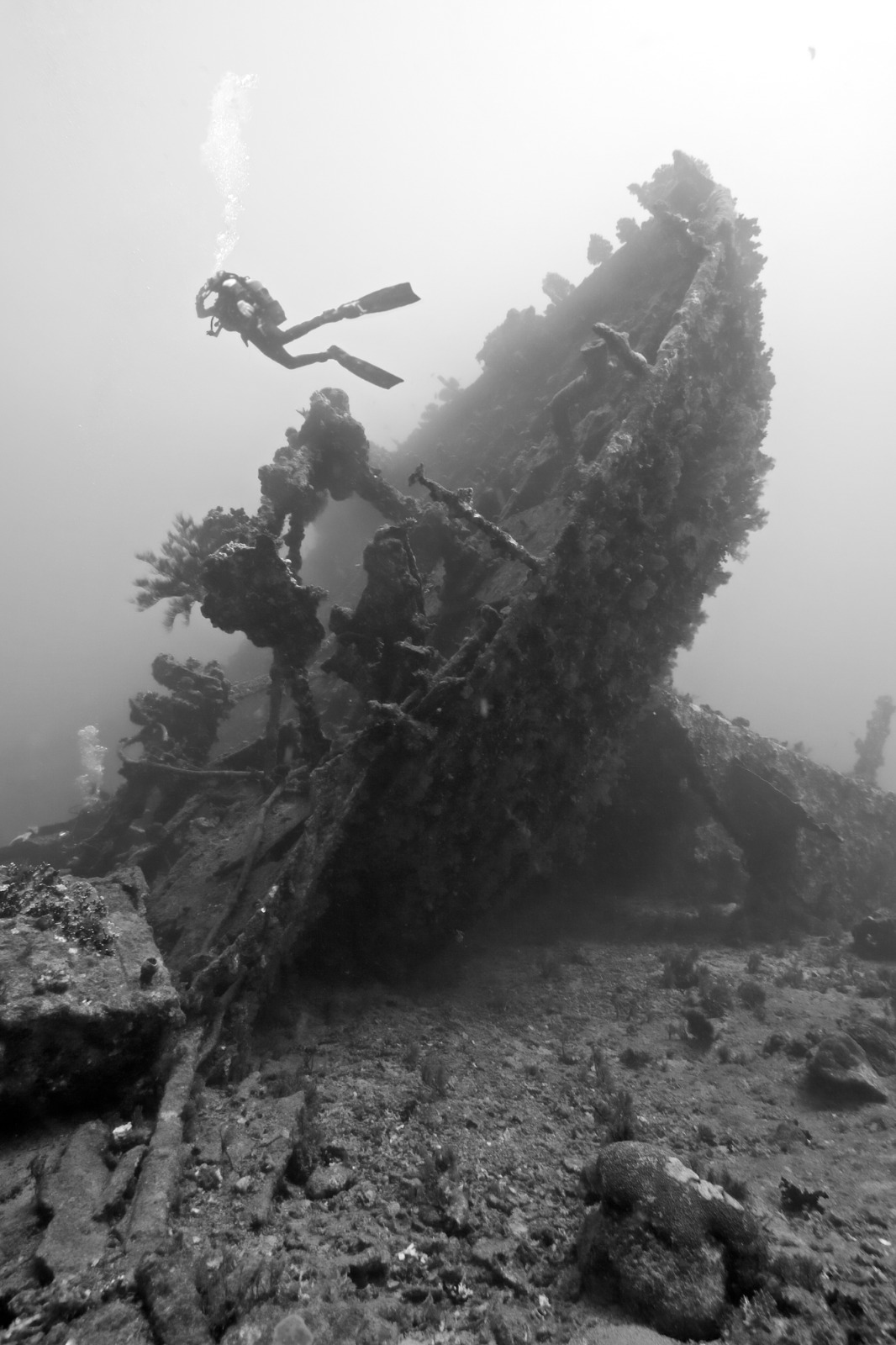 Wreck of the Ulysses