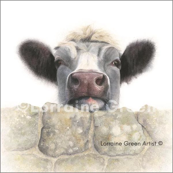 Print from a watercolour painting of a cow looking over a wall