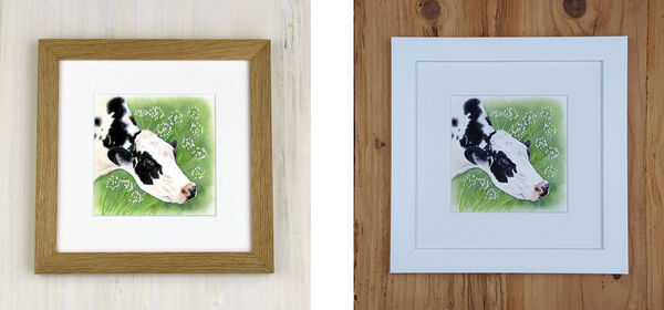 Cow Parsley Cow (II) is available in either an Oak Frame or a White Frame